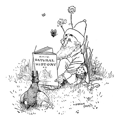 The Book Gnome, a site for book reviews and reading ideas for adults